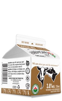 Organic Chocolate Milk 250ml Carton