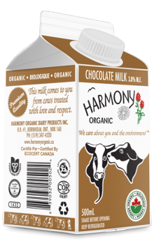 Organic Chocolate Milk 500ml Carton